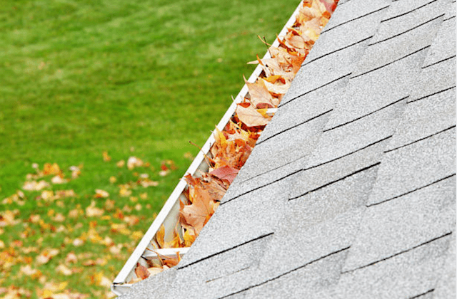 gutter filled with colorful leaves