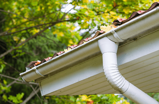gutter clogged with leaves in greenfield